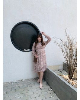 Korea Flora Chiffon Long Sleeve Long Dress  (Beige)