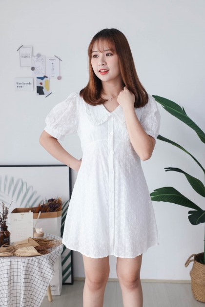 Korea Eyelet Lace V Collar Button Front Short Sleeve Dress (White)